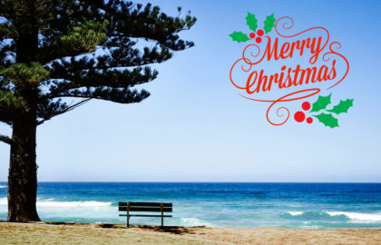 We wish you a Merry Christmas, New Year and Holiday Period.
